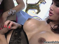Shemales Eva and Venus in oral service