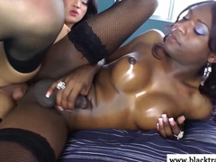 Ebony tranny assfucked by a horny ladboy